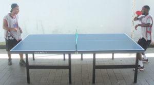 aluguel de ping pong