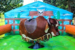 Touro mecânico é um dos brinquedos infantis para festa junina